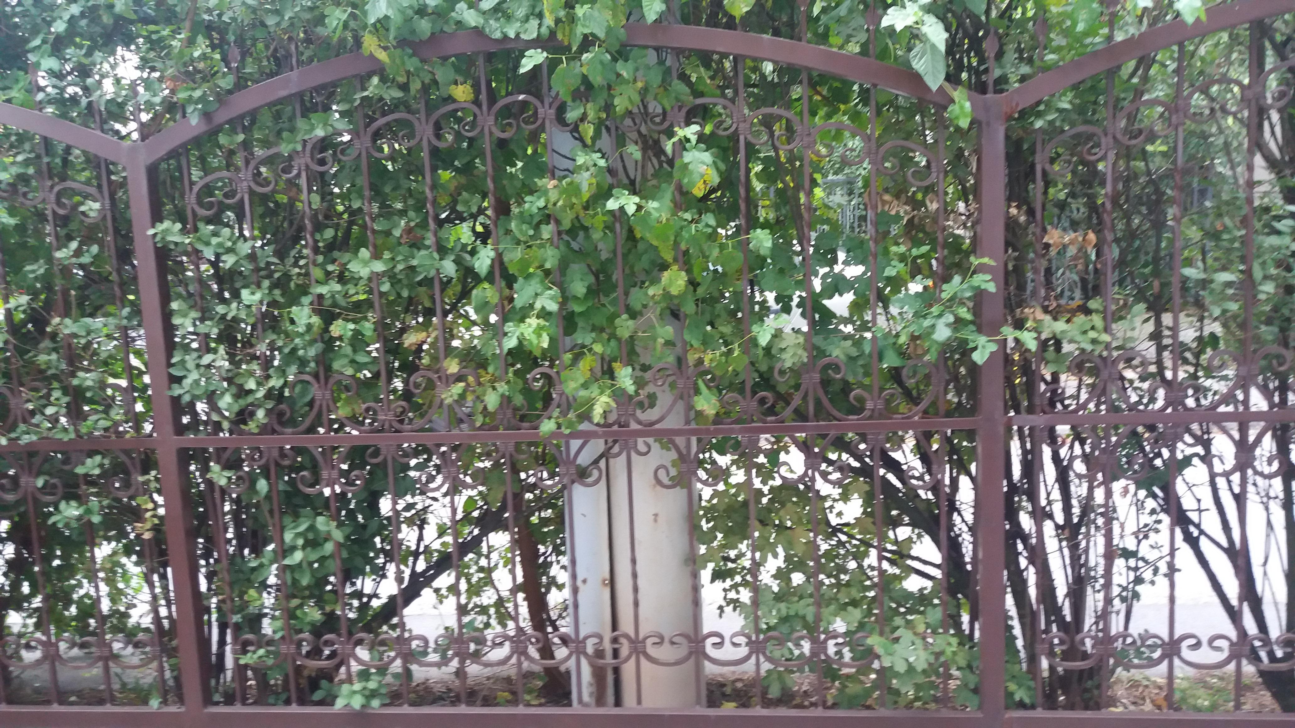 Kovana ograda